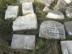 A small sample of the recovered headstones