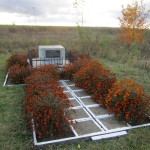 The southern mass grave memorial