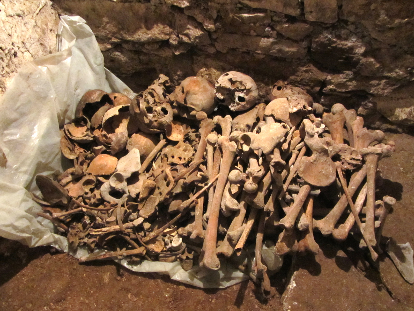 The carefully-stacked bones in the cellar. Photo © 2012 Jay Osborn.