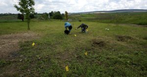 Carefully collecting human remains on the ground surface