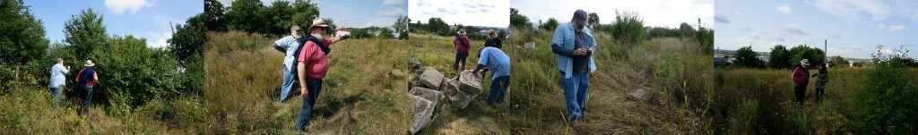 Steven and Bruce evaluating the vegetation