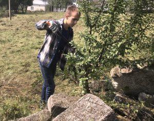 Yura tackles a tree