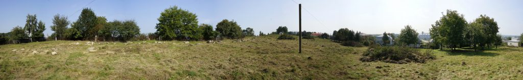 A panoramic view of the cemetery on the last day of work