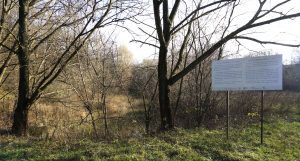 At the Janowska camp site