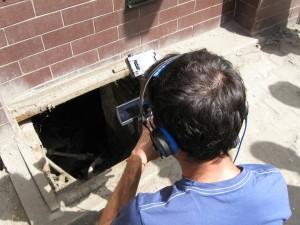 Peering into the cellar