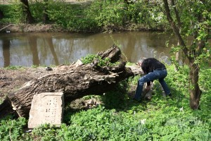 Newly-found headstones by the river