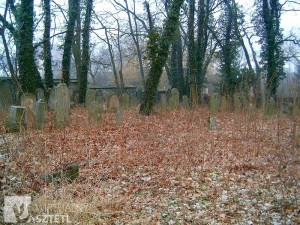The Jewish cemetery of Krapkowice