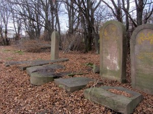 Standing and toppled headstones at Rohatyn's new Jewish cemetery