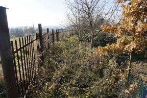 Existing cemetery fence