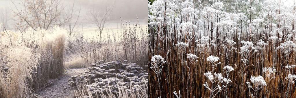 Oudolf garden designs in winter