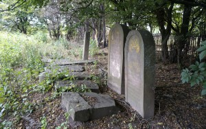 The few surviving matzevot in Rohatyn's new Jewish cemetery