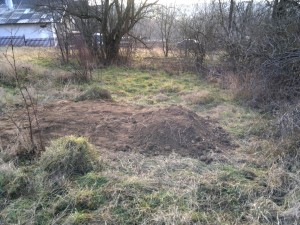 A view south from the burial site