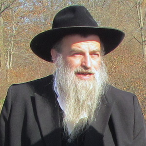 Rabbi Kolesnik