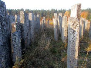 A recent view of the Brody Jewish cemetery