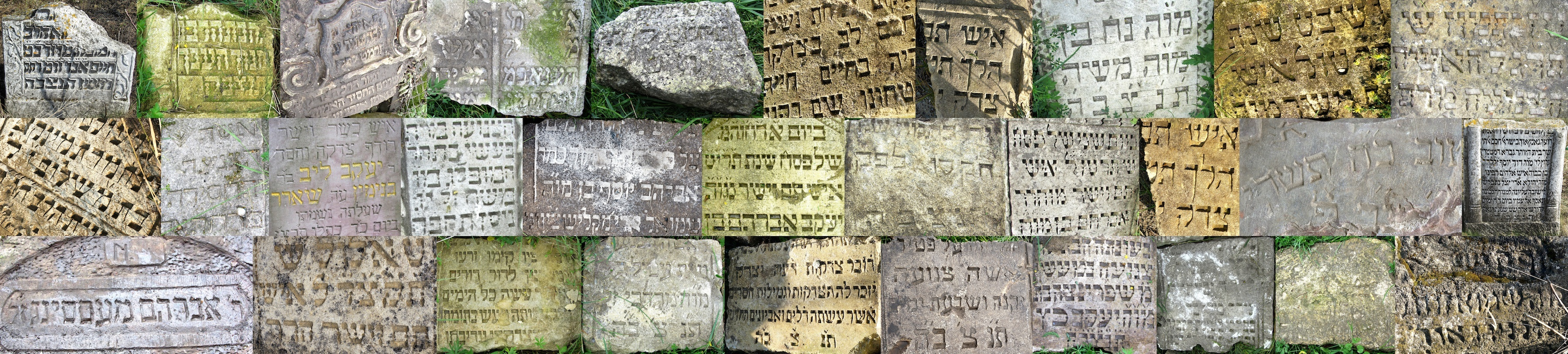 Written In Stone The Art And Meaning Of Rohatyns Jewish Grave