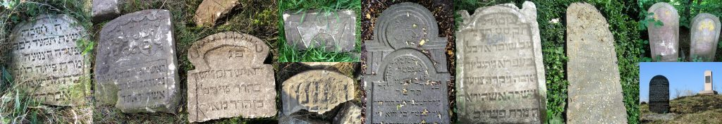 Examples of the shapes and composition of standing and fallen matzevot in the Rohatyn Jewish cemeteries