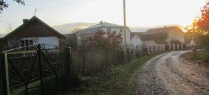 Neighboring houses in Perenivka