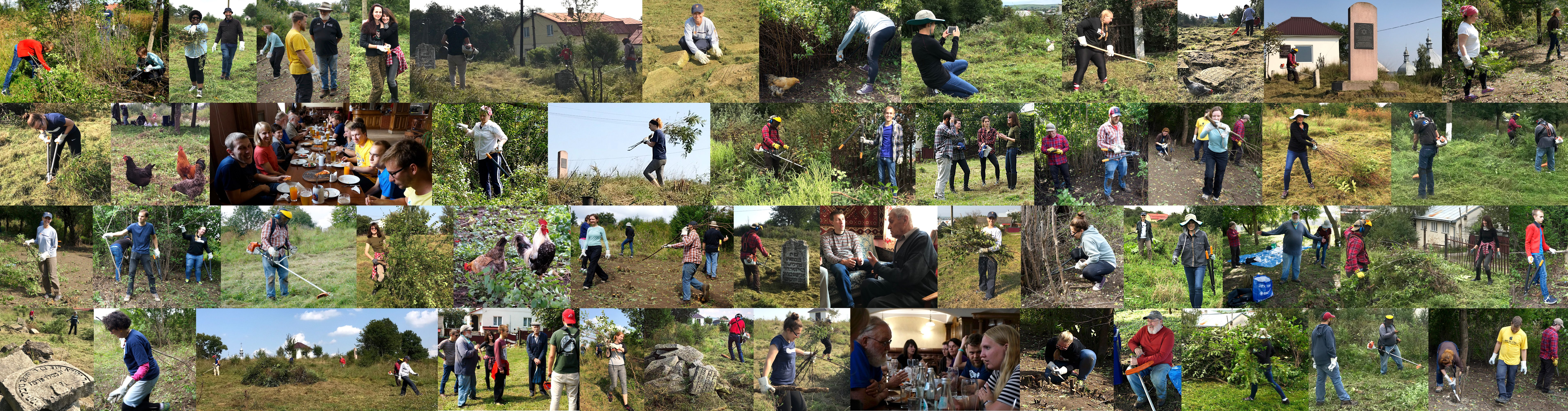 A collage of images from our week working together in Rohatyn's old Jewish cemetery
