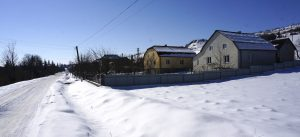 Lopushnia in winter