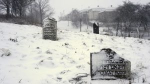 The old Jewish cemetery in Rohatyn, in winter