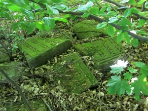 Some of the headstones recovered before 2011